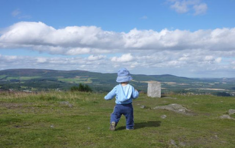 A toddler on the summit of a hill